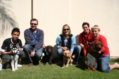 Southern Cross Puppy School Graduation